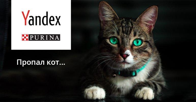 Яндекс поможет отыскать пропавшего питомца